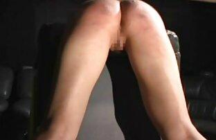سگ ماده رقص و نوازش خودش را در فیلم کامل سکسی مقابل آینه